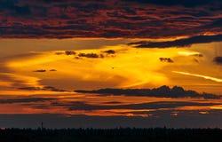 Δραματικό ηλιοβασίλεμα με το πετώντας πουλί στην περιοχή της Μόσχας Στοκ Εικόνες