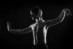 Δραματικό πορτρέτο του αθλητικού τύπου kung fu Στοκ εικόνα με δικαίωμα ελεύθερης χρήσης