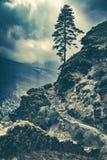 Δραματικό τοπίο φύσης, που πραγματοποιεί οδοιπορικό στο Νεπάλ στοκ εικόνες
