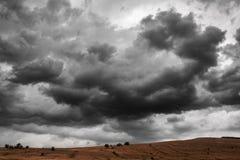 Δραματικό υπόβαθρο σύννεφων θύελλας βροντής το μήλο καλύπτει το δέντρο ήλιων φύσης λιβαδιών τοπίων λουλουδιών Στοκ φωτογραφία με δικαίωμα ελεύθερης χρήσης
