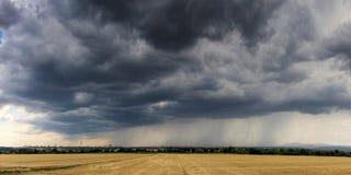 Δραματικό thundercloud πέρα από έναν τομέα σίτου Στοκ εικόνα με δικαίωμα ελεύθερης χρήσης