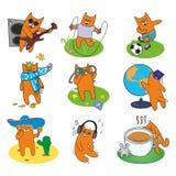 Δραστήριες κόκκινες γάτες συνόλου Στοκ Εικόνες
