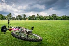 Δραστηριότητα ποδηλάτων βουνών στον τομέα στοκ εικόνες με δικαίωμα ελεύθερης χρήσης
