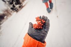 Δραστηριότητα χειμερινού αθλητισμού Ο οδοιπόρος γυναικών που με το σακίδιο πλάτης και τα πλέγματα σχήματος ρακέτας που στο χιόνι  Στοκ Φωτογραφίες