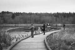 Δραστηριότητες ανθρώπων στο δημόσιο πάρκο B/W λιμνών Burnaby Στοκ Φωτογραφίες