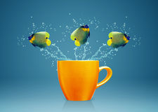 Δροσερά ψάρια Στοκ Εικόνα
