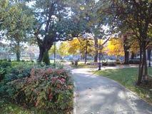Δροσερή άποψη σε ένα πάρκο Στοκ εικόνες με δικαίωμα ελεύθερης χρήσης