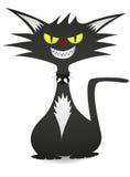 Δροσερή γάτα Στοκ φωτογραφίες με δικαίωμα ελεύθερης χρήσης
