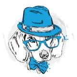 Δροσερό σκυλί με το καπέλο και τα γυαλιά χαριτωμένο κουτάβι Στοκ Φωτογραφία