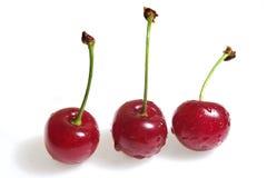 δροσιά κερασιών Στοκ φωτογραφία με δικαίωμα ελεύθερης χρήσης