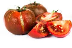 Δροσοσκέπαστες σκοτεινές ντομάτες στο άσπρο υπόβαθρο στοκ εικόνα με δικαίωμα ελεύθερης χρήσης