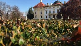 Δροσοσταλίδες στο spiderweb στο Μπους πυξαριού και το κάστρο Austerlitz απόθεμα βίντεο