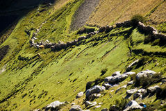 δρόμοι Θιβέτ στοκ εικόνες με δικαίωμα ελεύθερης χρήσης