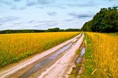 δρόμος αγροτικός Στοκ φωτογραφίες με δικαίωμα ελεύθερης χρήσης