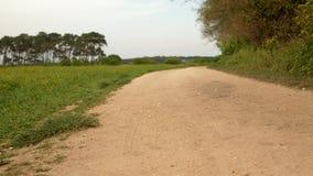 Δρόμος αμμοχάλικου με τον πράσινο τομέα στην πλευρά απόθεμα βίντεο