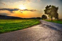 Δρόμος ασφάλτου, ηλιοβασίλεμα πέρα από το λιβάδι και πλατύφυλλο δέντρο στο θερινό βράδυ, ουρανός, πράσινη χλόη χαλάρωση ατμόσφαιρ Στοκ Φωτογραφία