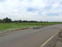 Δρόμος ασφάλτου στη χώρα Chachoengsao Ταϊλάνδη στοκ φωτογραφίες