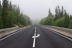 Δρόμος ασφάλτου μέσω της δασικής, ομιχλώδους θερινής ημέρας Στοκ φωτογραφία με δικαίωμα ελεύθερης χρήσης