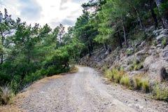 Δρόμος βουνών μέσω των πεύκων 1 100 συλλήφθείτ πολωμένο ακατέργαστο TIFF Τουρκία φίλτρων ISO jpeg kemer Στοκ φωτογραφία με δικαίωμα ελεύθερης χρήσης