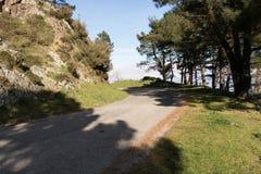 Δρόμος βουνών μεταξύ των δέντρων Στοκ εικόνες με δικαίωμα ελεύθερης χρήσης