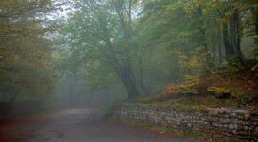 Δρόμος βουνών σε ένα εγκαταλειμμένο μοναστήρι Στοκ εικόνα με δικαίωμα ελεύθερης χρήσης