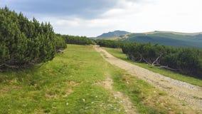 Δρόμος βουνών στο οροπέδιο Bucegi στοκ εικόνα