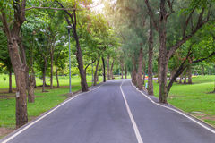 Δρόμος για το ποδήλατο στο πάρκο πόλεων με τα δέντρα Στοκ Εικόνες