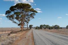 Δρόμος, εσωτερικός της δυτικής Αυστραλίας Στοκ Φωτογραφία