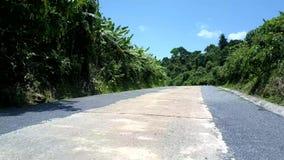 Δρόμος ζουγκλών με τους πόλους στην πράσινη υδρορροή χλόης και βροχής απόθεμα βίντεο