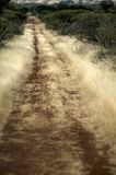δρόμος θάμνων veld Στοκ εικόνες με δικαίωμα ελεύθερης χρήσης