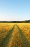 δρόμος κίτρινος Στοκ Εικόνα