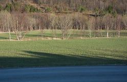 Δρόμος και σκιά Στοκ Εικόνες