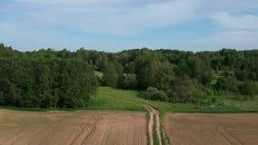 Δρόμος καλλιεργήσιμου εδάφους και πρόσφατα σπαρμένοι καλλιεργημένοι τομείς την άνοιξη, εναέριοι φιλμ μικρού μήκους