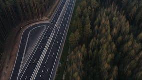 Δρόμος μέσω της πράσινης κομψής δασικής, εναέριας άποψης απόθεμα βίντεο