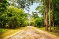 Δρόμος μέσω του τροπικού δάσους σε Angkor Wat η Καμπότζη συγκεντρώνει siem Στοκ Εικόνα