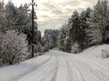 Δρόμος μέσω του χειμώνα Στοκ φωτογραφία με δικαίωμα ελεύθερης χρήσης