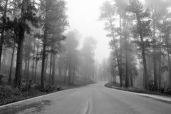 Δρόμος μέσω των μαύρων λόφων Στοκ εικόνα με δικαίωμα ελεύθερης χρήσης