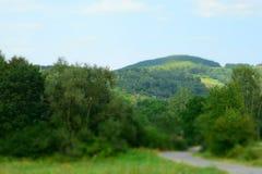 Δρόμος μέσω των πράσινων τομέων στα Καρπάθια βουνά Στοκ Εικόνες