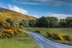 Δρόμος μετά από την ακτή Βόρεια Θαλασσών κοντά στο έγκαυμα Westgarty, Σκωτία Στοκ Εικόνα