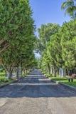 Δρόμος μεταξύ των πράσινων δέντρων στο πάρκο παραλιών antalya Τουρκία Στοκ εικόνες με δικαίωμα ελεύθερης χρήσης