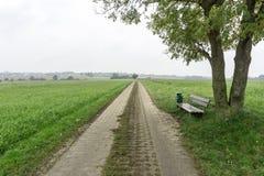 Δρόμος μεταξύ των πράσινων τομέων από ένα χωριό σε άλλο στοκ φωτογραφίες