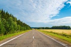 Δρόμος μεταξύ των τομέων δασών και συγκομιδών taiga τη θερινή ημέρα στη Σιβηρία, Ρωσία Στοκ φωτογραφία με δικαίωμα ελεύθερης χρήσης