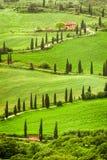 Δρόμος με πολλ'ες στροφές στον αγροτικό τουρισμό στην Ιταλία στο λόφο, Τοσκάνη Στοκ Εικόνες