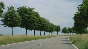 Δρόμος με τα δέντρα στη Γερμανία απόθεμα βίντεο