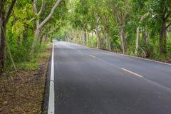 Δρόμος με τα δέντρα κατά μήκος του τρόπου στοκ εικόνα με δικαίωμα ελεύθερης χρήσης