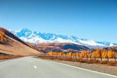 Δρόμος με τα δέντρα φθινοπώρου και τα χιονισμένα βουνά Altai, Σιβηρία, Ρωσία στοκ φωτογραφία με δικαίωμα ελεύθερης χρήσης