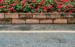 Δρόμος με τα κόκκινα λουλούδια Στοκ Εικόνες