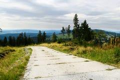 Δρόμος με το πεζοδρόμιο τσιμεντένιων πλακών στο λόφο στο πάρκο τοπίων βουνών κουκουβαγιών, Sudetes, Πολωνία Στοκ Εικόνες