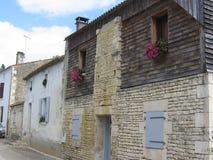 Δρόμος με το χαρακτηριστικό σπίτι του πράσινου Venise στην ελώδη περιοχή Poitevin στη Γαλλία στοκ φωτογραφία με δικαίωμα ελεύθερης χρήσης