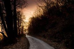Δρόμος ξύλων στο ηλιοβασίλεμα Στοκ φωτογραφίες με δικαίωμα ελεύθερης χρήσης